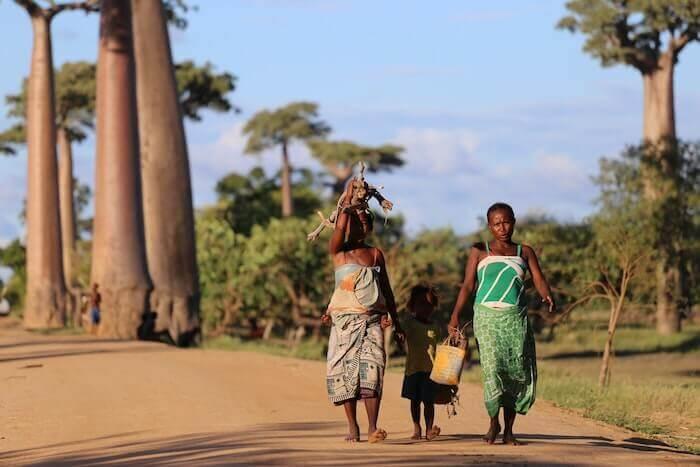 マダガスカルの景色