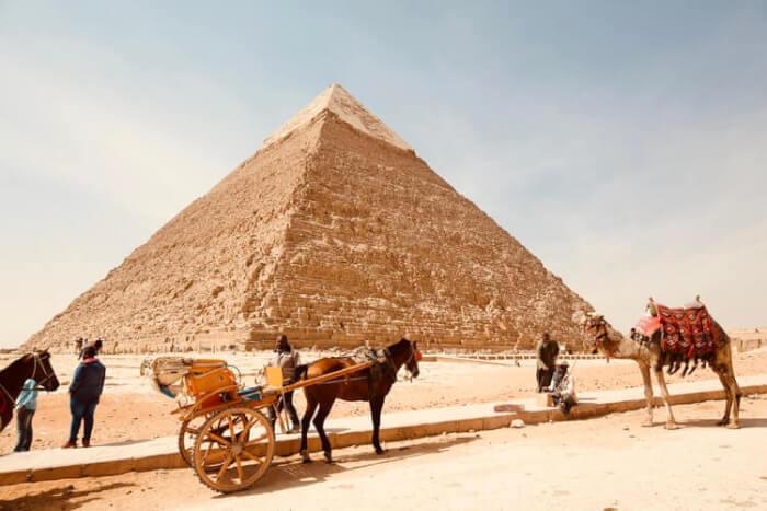 エジプト 転職エージェント 移住