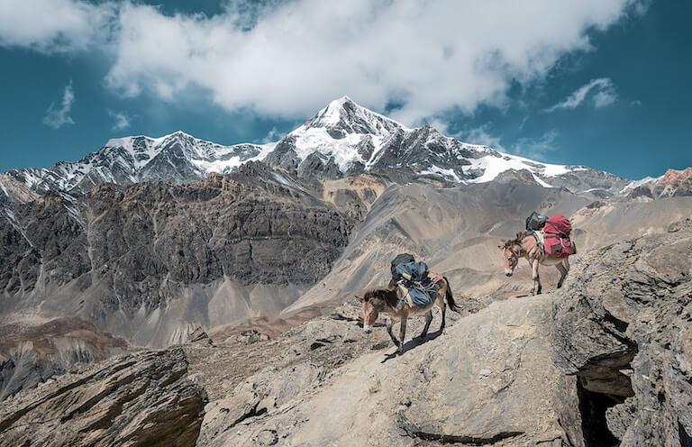 ネパール 風景